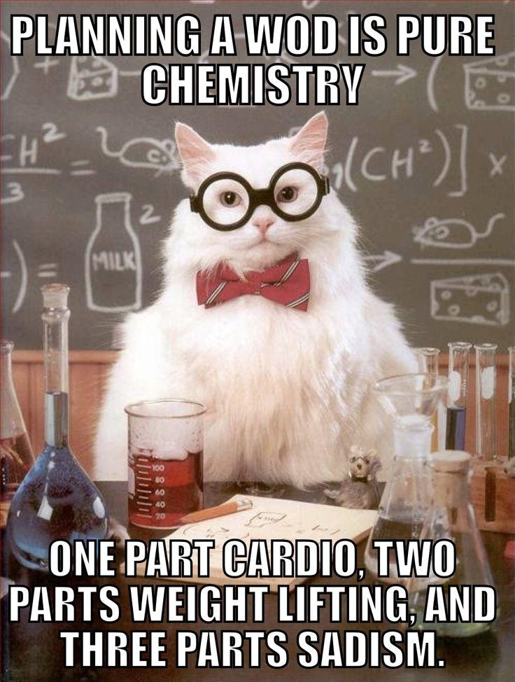 829d9b9db00e6633b70f6c5611548554 science cat science jokes best 25 crossfit memes ideas on pinterest crossfit humor,Get Down Off Cross Meme
