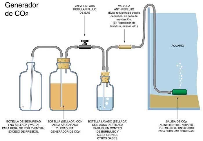 Como hacer generador CO2 casero para acuarios - Ikkaro