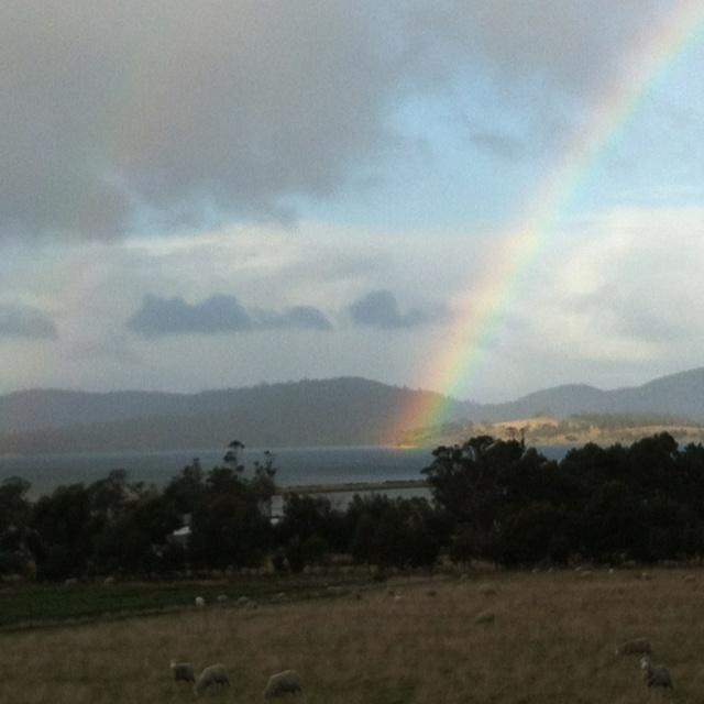 Rainbows in Hobart