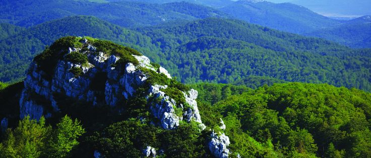 National park Risnjak, famous for its name that comes from the animal lynx (ris) that lives on the top of the mountain Risnjak.  #Croatia #Zagreb #National #park #Nature #park #outdoor #mother #nature #wilderness #wild #nature #flora #and #fauna #adventure #travel #visit #destination