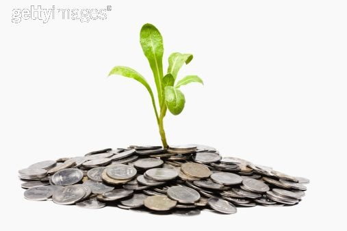 Dinheiro não nasce em árvore. É a árvore que nasce no dinheiro. Faça planejamento e gaste bem sua grana.