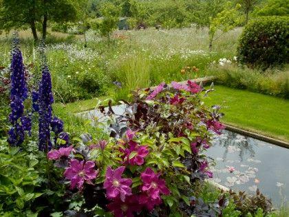 ,: Purple Punch, Gardens Ideas, Backyard Ideas, Backyard Landscape, Backyard Design, Water Features, Gardens Design, Beautiful Gardens, Outdoor Spaces
