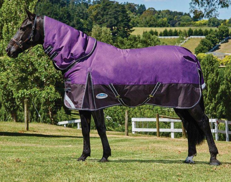 Comfitec plus dynamic medium detachaneck horse blanket