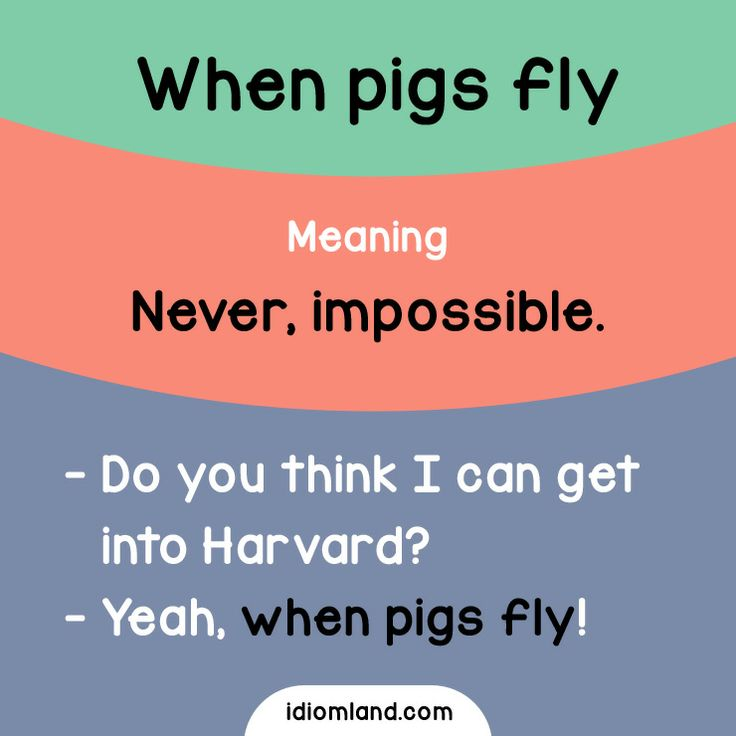 Have you ever seen a flying pig?  ‪#‎idioms‬ ‪#‎english‬ ‪#‎learnenglish‬