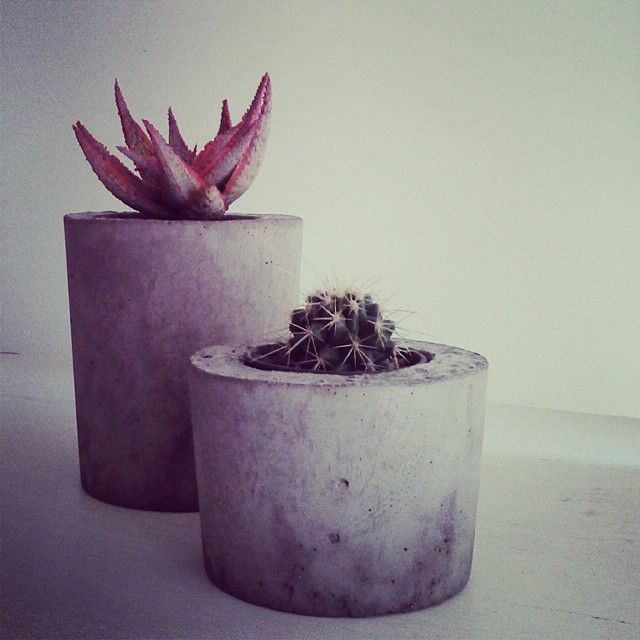 #raw concrete luurve! #saltyshack  #saltylife  #concretelife  #concreteplanter  #concretepots  #concretedecor #handmade  #aloeearth #succulent  #succulove  #shopsmall  #lovetocreate  #industrial  #industrialdecor  #industrialdesign  #blankcanvas  #concretejungle  #concreteart #concreteporn #concretepot #concreteplanters  #cactus #cacti #hashtagoverload !