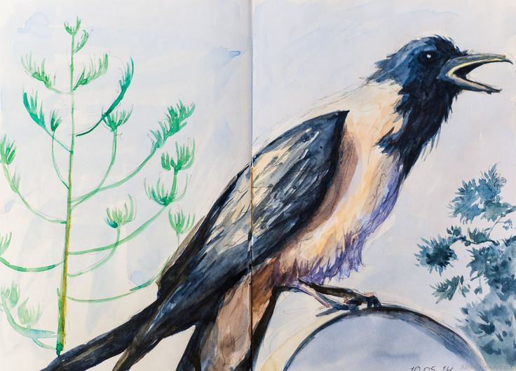 raven by AlexGreenArt Watercolor Sketchbook