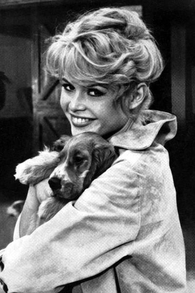 Brigitte Bardot, le style mythique d'une icône. Le it-dog: Bien avant le chihuahua de Paris Hilton ou le caniche de Blake Lively, cette grande amie des animaux adorait promener son chien.
