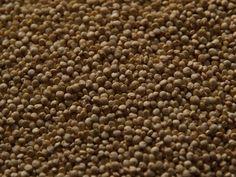 Como estourar quinoa como se fosse pipoca   eHow Brasil