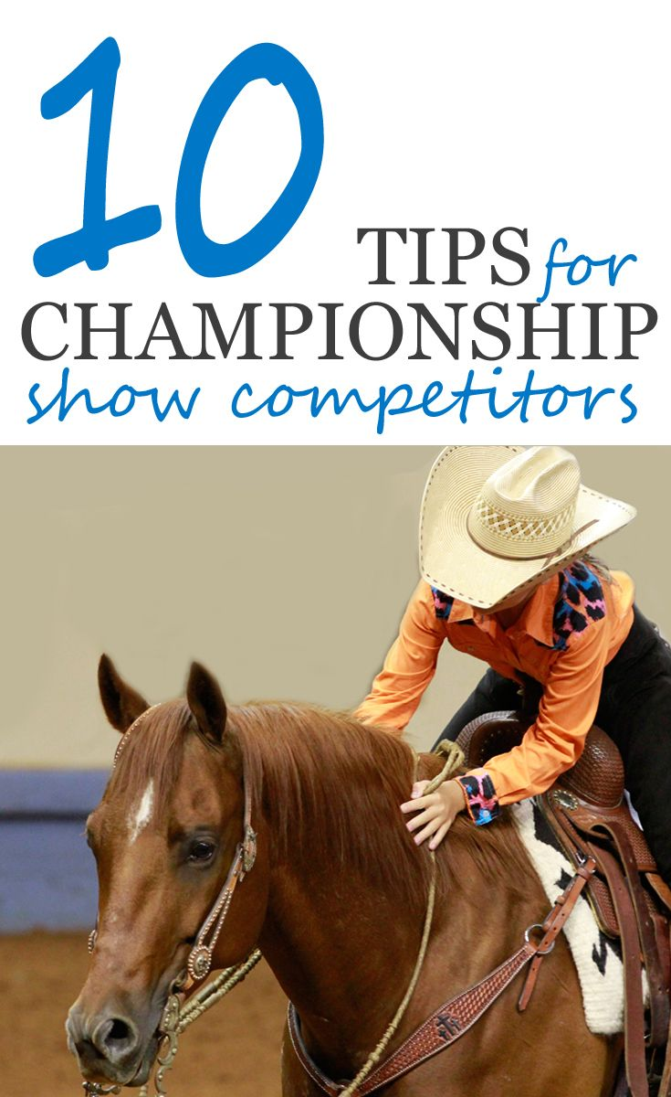 It's crucial to keep things in perspective when competing at a championship horse show.