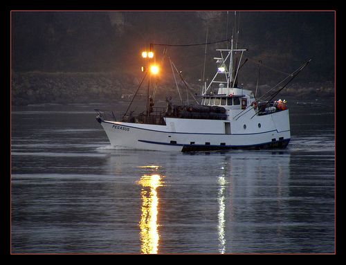 7 best images about fishing vessels f v on pinterest for Newport oregon fishing