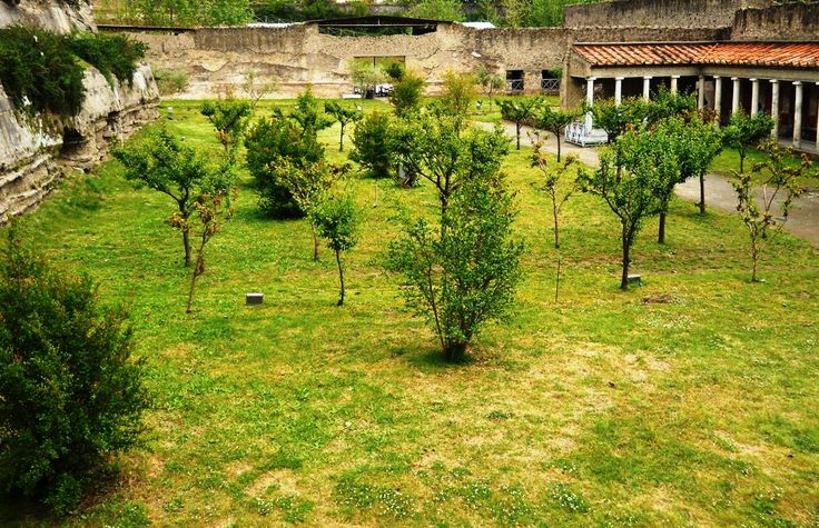 Garden in the Villa of Poppaea.