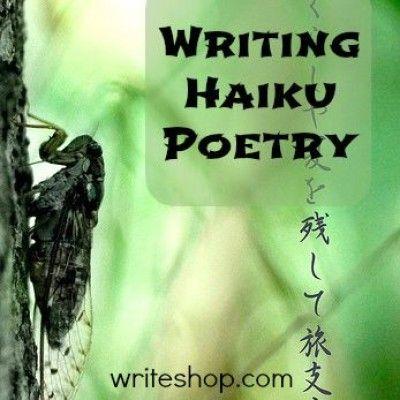 poetry gcse english writing ideas and homeschool