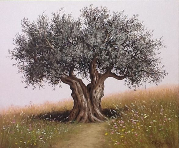 Olive tree. Acrylic colors drawing. Signed. Price upon request.