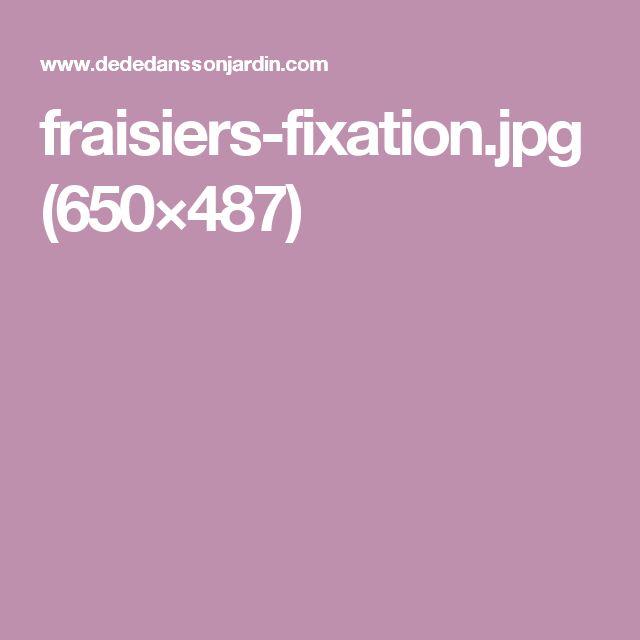 fraisiers-fixation.jpg (650×487)