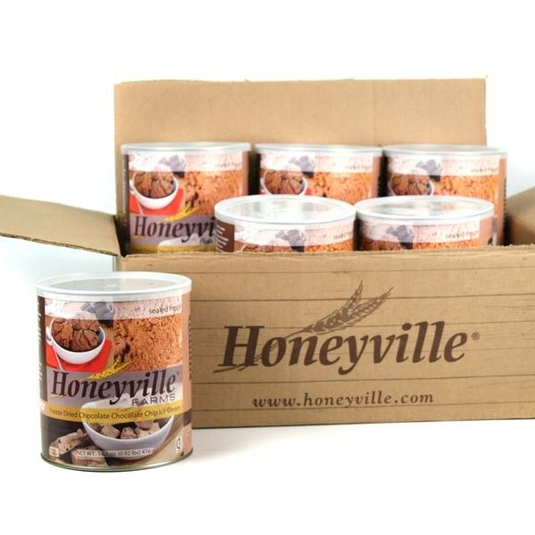 Honeyville Freeze Dried Chocolate Ice Cream in a bowl