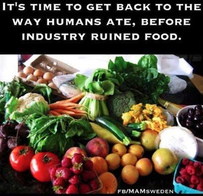 Its time to get back to the way humans ate, before industry ruined food!!