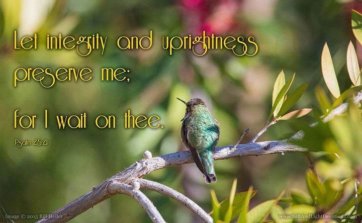 Let integrity and uprightness preserve me; for I wait on thee. --Psalm 25:21 KJV    http://ift.tt/2dlIsJq  #Bible #inspirational #Psalms