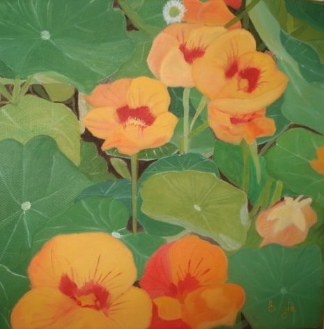 One of a set of oil painting of Nasturtiums