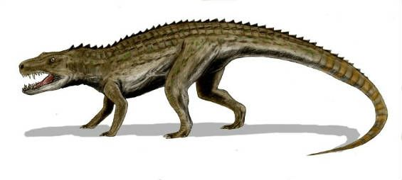 Gbahali- African cryptid: a large crocodilian or monitor lizard. It has three serrated rows of ridges down its armoured back, a long tail, short snout, and lots of teeth. It is an ambush predator, drowning it's prey then taking them to shore to eat it. They are known to kill people.