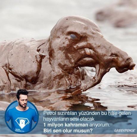 Petrol şirketleri, yaşama saygı duymuyor. Sen de Kuzey Kutbu'nu petrol şirketlerinden kurtarmak için tıkla http://www.1milyonkahraman.org/ ve 1 milyon kahramana katıl.