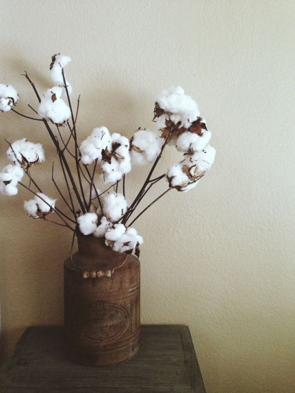Rustic Old Water Can With Cotton Stems Rustic Home Decor