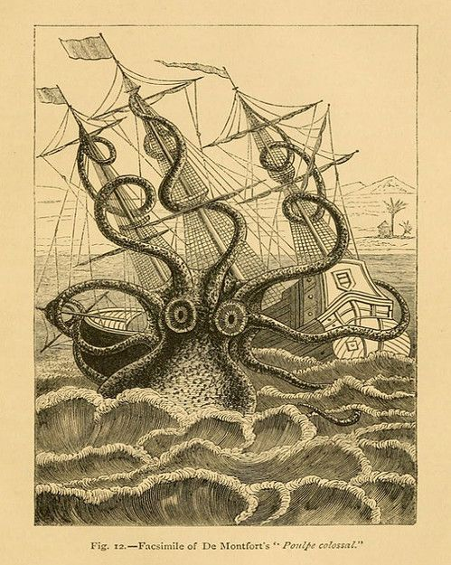 "Vintage Sea Monster Print 'Colossal Squid"" Antique Mythological Print - Nautical Sailor Pirate Ship ($24.00) - Svpply"