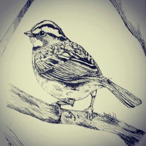 Gorrión , pequeña ave que siempre me a gustado. .. Futuro tatuaje ... :)