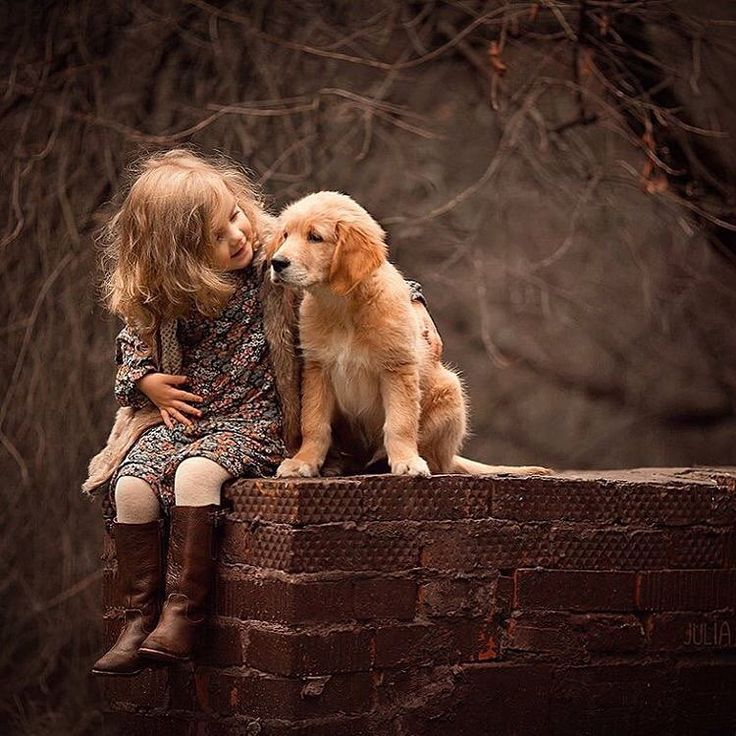 Kids and Their Pets. This Little Girl is so Attentive Towards Her Puppy.