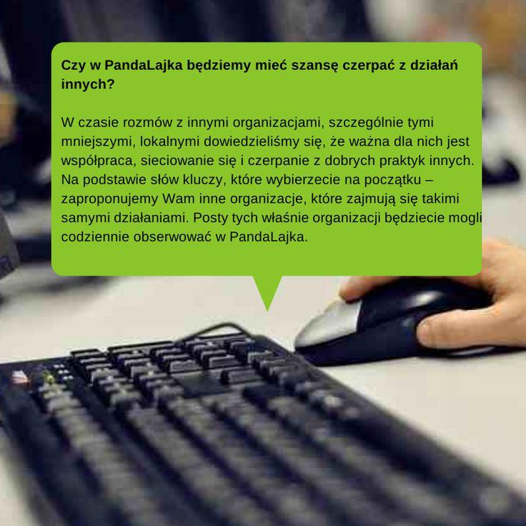 Kolejne pytania i odpowiedzi  http://www.pandalajka.pl/