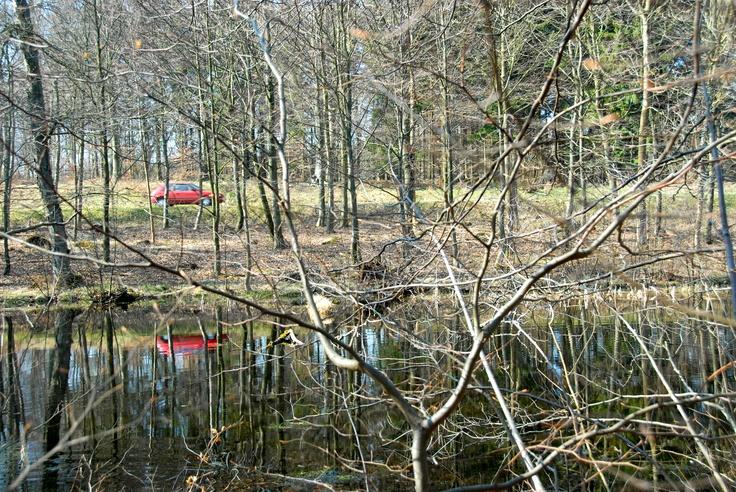 Mirroring.Bornholm.