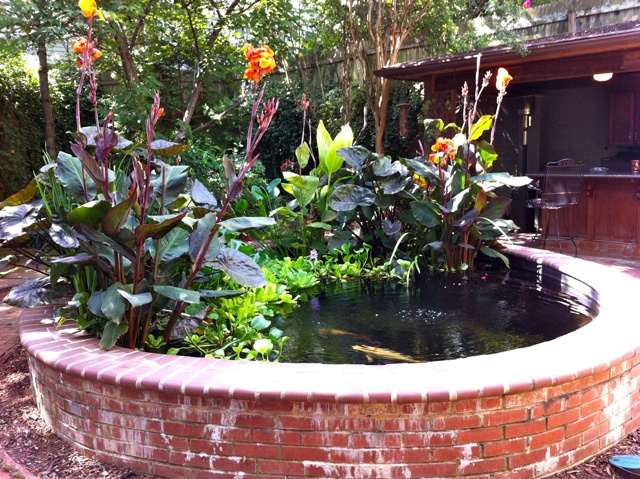 Build up bricks or stone around the pond so you dont have for How deep should a koi pond be