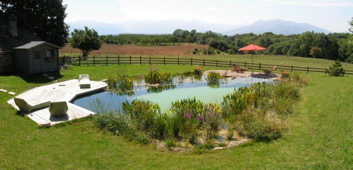 Piscine naturelle BioNova avec la régénération intégrée.   BioNova, le spécialiste de la piscine naturelle et biologique, baignade naturelle, piscine écologique et biologique