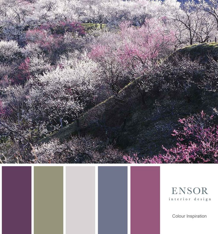 cherry blossom #colour #purple #nature #beautiful #inspiration www.ensorinteriordesign.co.uk
