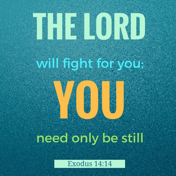 THE LORD will fight for you; you need only be still