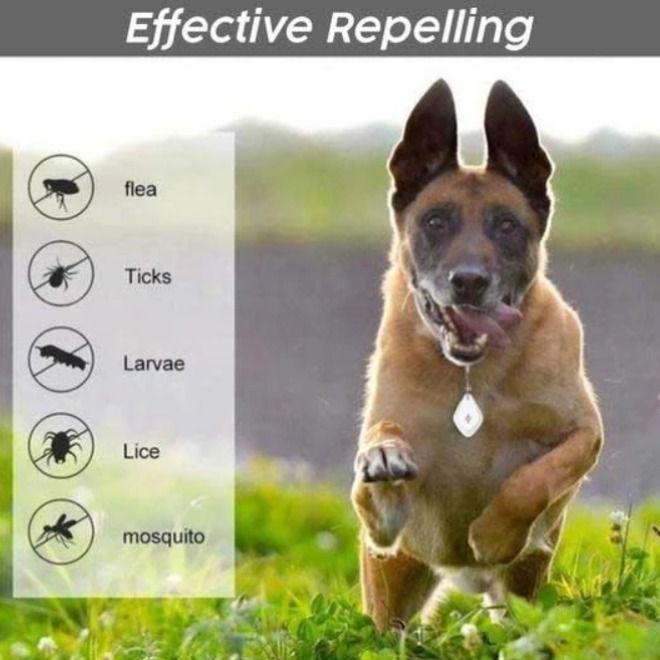 Ultrasonic Pest Repeller For Pets Fleas Flea And Tick Repeller
