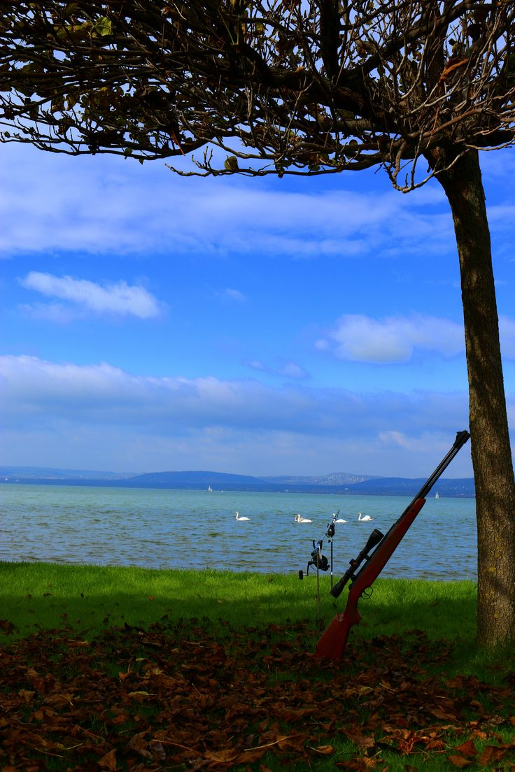 Hunting and Fishing at Lake Balaton during Fall