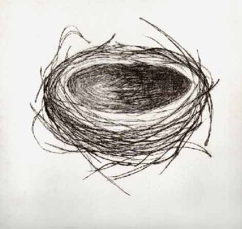 Stacy Frank   drypoint etching  Looks like this would be easy to stitch.