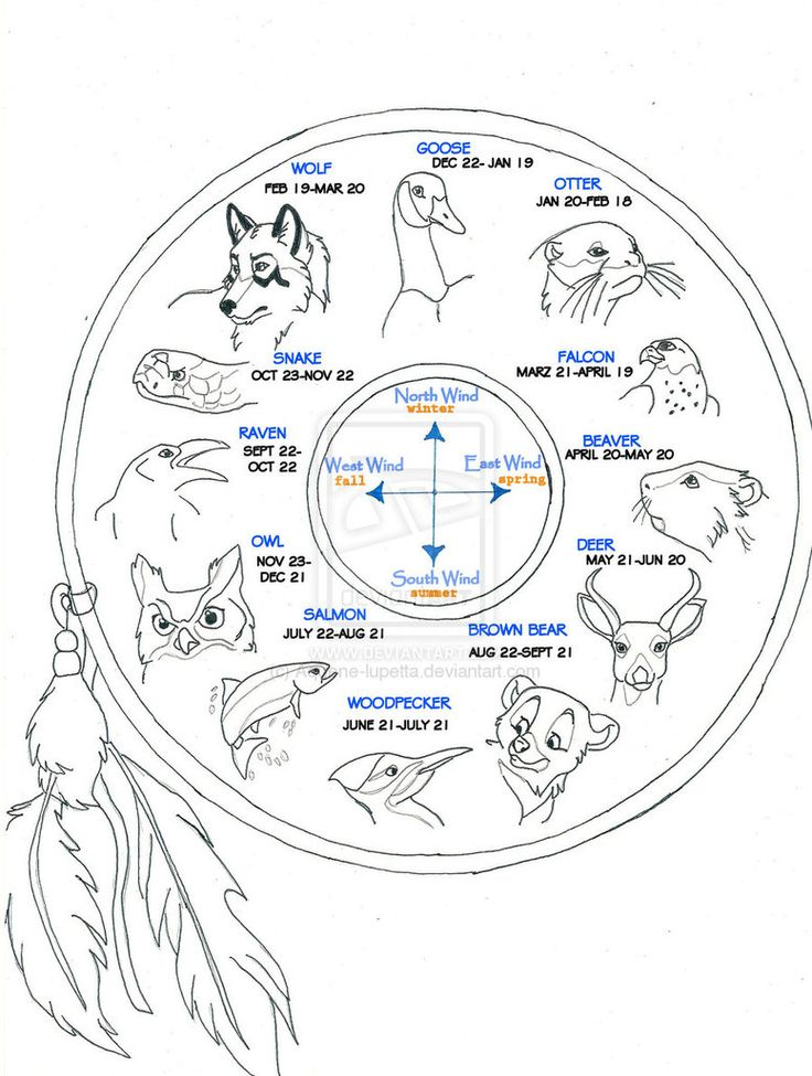 1000 images about wolf coloring pages on pinterest