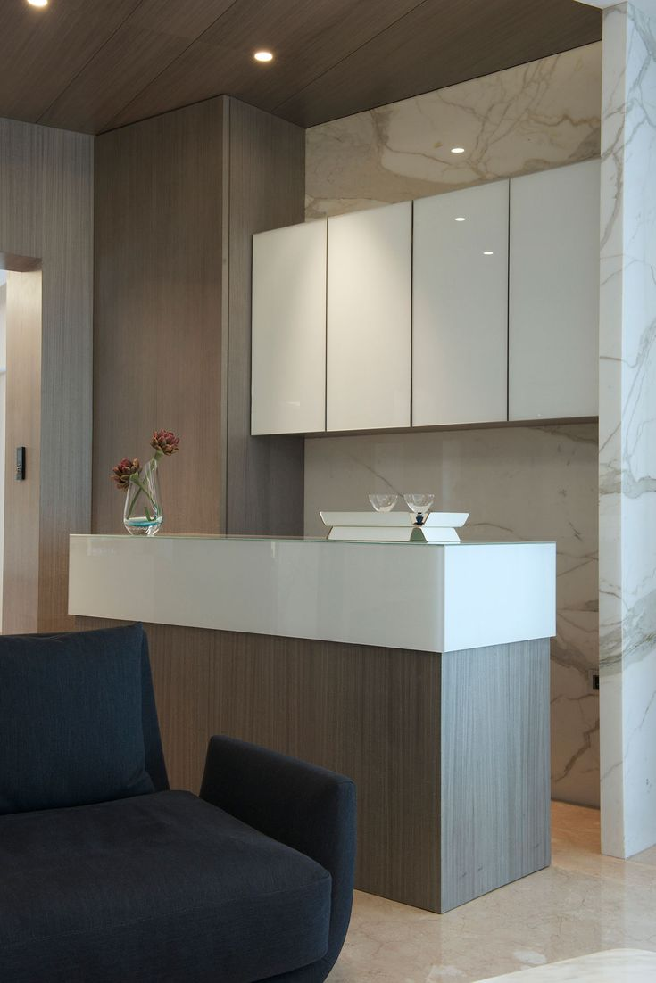 Gupta Apartment by ZZ Architects (4)