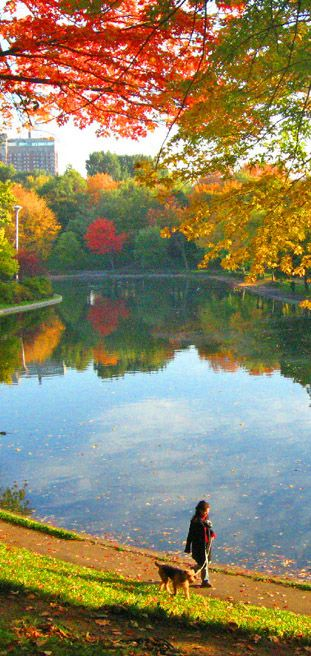 Parc Lafontaine in the Autumn:http://bbqboy.net/photo-essay-montreal-autumn/ #montreal #canada #autumn