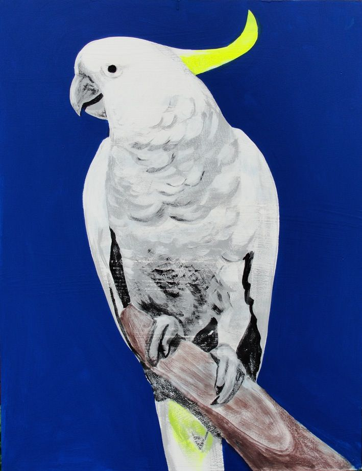 Geoffrey Carran's amazing bird paintings are available as limited edition giclee prints! Printed on beautiful 300gsm archival cotton rag paper, the prints come in an edition of 50. Each individual print has a white border and is hand signed by the artist with the title and edition number. The prints come in two sizes – oversize A4 and oversize A3. Prints are supplied unframed.Your print will be securely flat packed and sent via regular Australia Post. Please allow approximat...