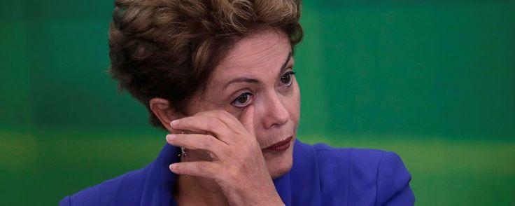 Os melhores memes sobre a votação de impeachment da Dilma - TecMundo