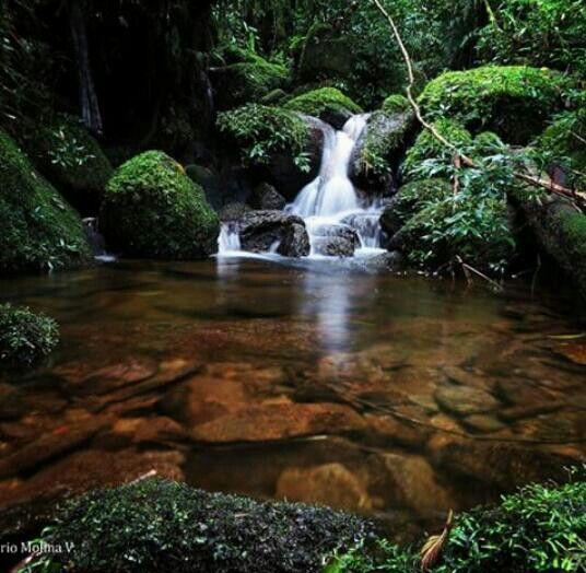 Vereda El Carbón, Alejandría. Oriente Antioqueño Colombia