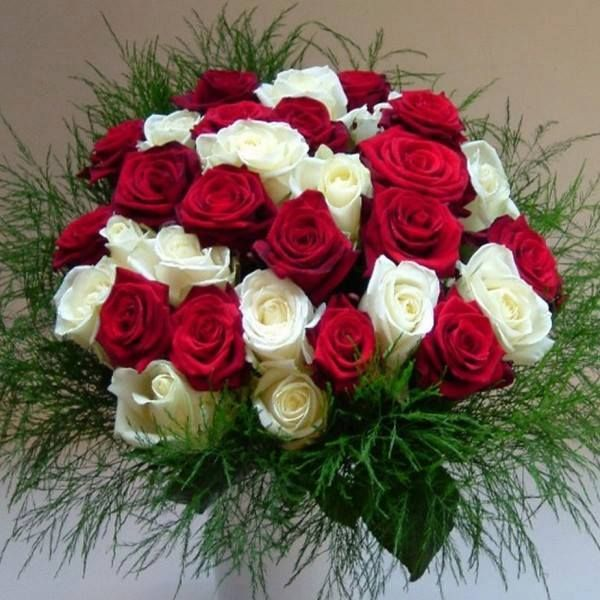 20 best Send Roses Online to India images on Pinterest | Send roses ...