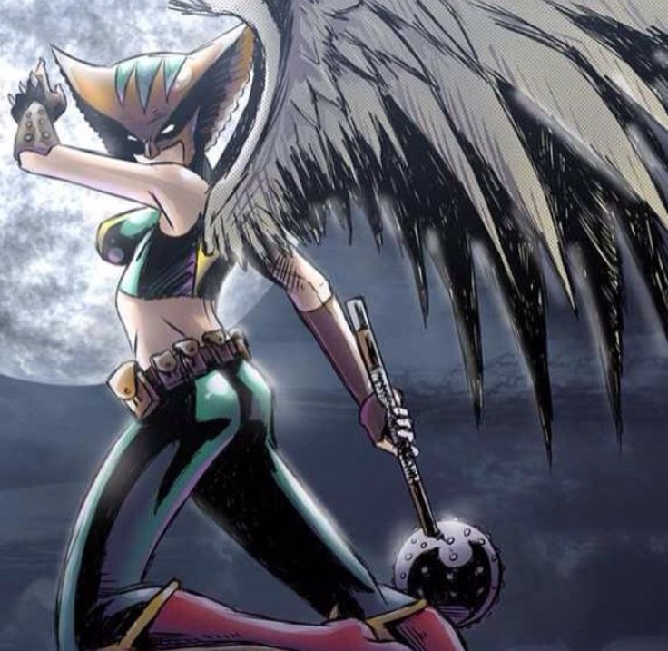 Hawkgirl: 17 Best Images About Hawkgirl And Hawkman On Pinterest