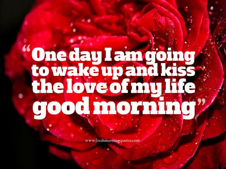8 Best Good Morning Love Quotes Images On Pinterest: Best 20+ Good Morning Images Ideas On Pinterest