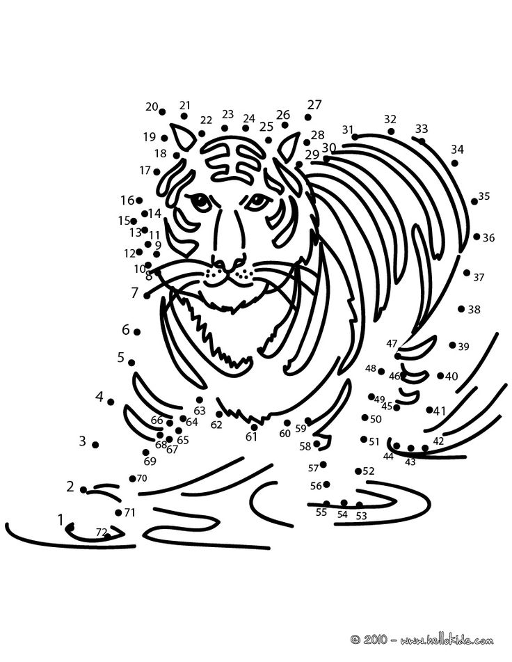 TIGER dot to dot game printable connect the dots game