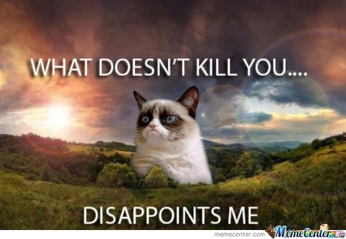 What doesn't kill you -Grumpy Cat