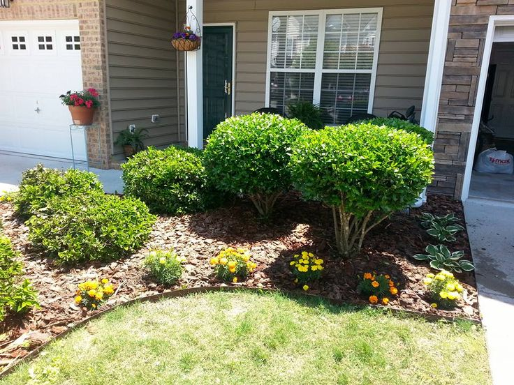 Simple Landscaping With Brown Border Edge Marigolds And Hostas Shrubs