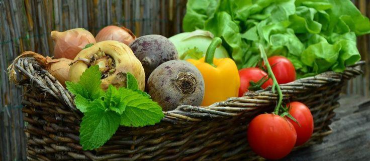 Zdrowa dieta jest urozmaicona. Jak korzystać z różnorodności?